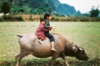 Trip splendor Vietnam & Cambodia